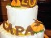 capa_2011_anniversary_cake